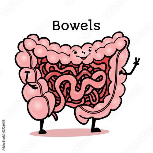 cute and funny human guts bowels intestines character cartoon