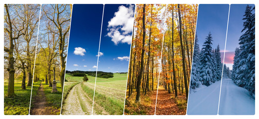 Four season collage from shots with roads in landscape