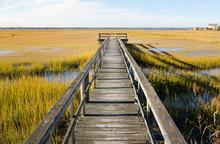 Wooden Pier Over Swamp In North Wildwood