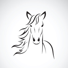 Vector Of A Horse Head Design On White Background. Farm Animal.