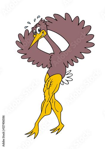Fotografija  bird posing legs