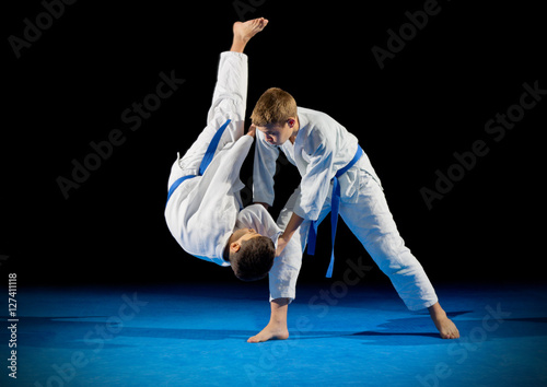 Garden Poster Martial arts Boys martial arts fighters isolated