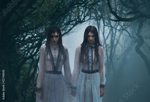 Vászonkép Two mysterious sexy lady's with long black hair, in eerie they woods looking at
