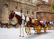 Seville horse carriages in Cathedral of Sevilla