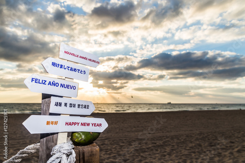 happy new year from florida happy new year in french japanese spanish