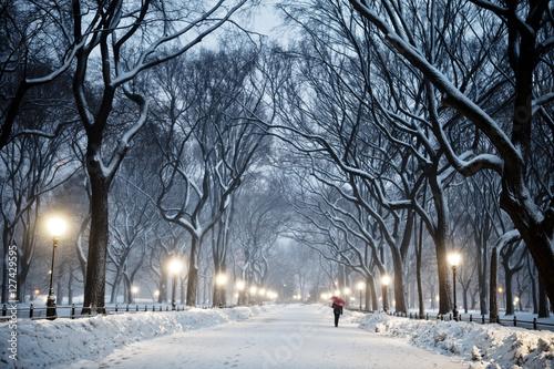 Wallpaper Mural Winter Central Park