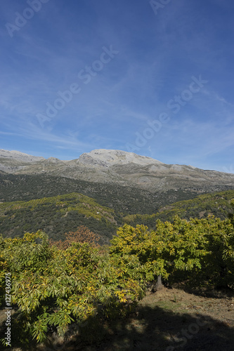 Hermosos Paisajes Naturales De España El Valle Del Genal En La
