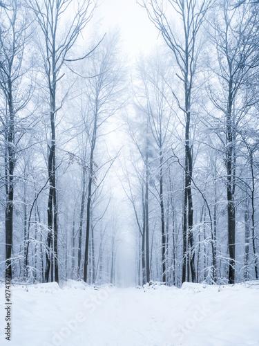 Foto-Leinwand ohne Rahmen - Verschneiter Wald im Winter (von eyetronic)