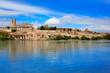 Zamora skyline by Duero river of Spain