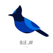 Blue Jay Vector Icon. Logo. Fl...