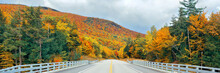 Highway And Autumn Foliage