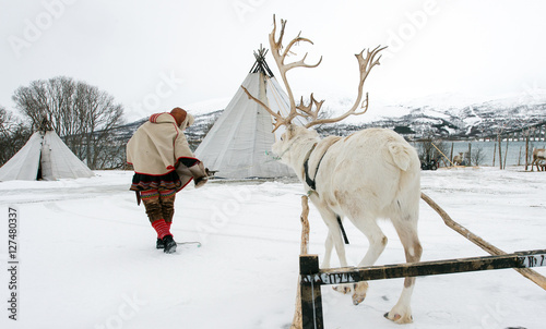 Reindeer breeder dressed in national Same clothes with a reinde
