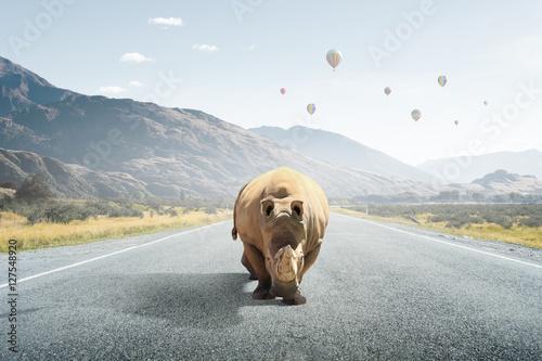Spoed Foto op Canvas Neushoorn Heavy transport tax . Mixed media
