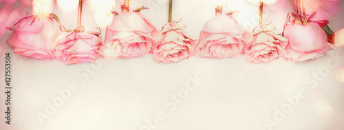 Foto-Tapete - Pink rose floral panoramic border with bokeh lighting, pastel color, greeting card (von VICUSCHKA)