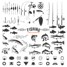 Set Of Fishing Labels Design E...