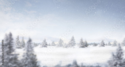 snow and winter landscape panorama Wallpaper Mural