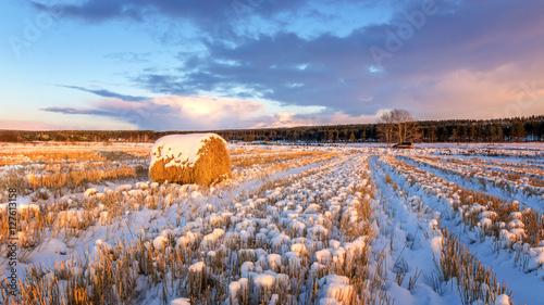 Fotografie, Obraz  сельское поле со скошенной травой стогом сена и первым снегом, Россия, Урал осен