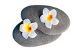 stones for spa treatments and exotic flowers close up on white b