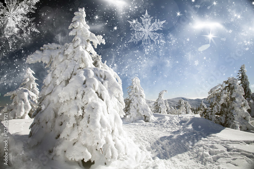 Photo  Fantastic winter landscape
