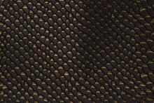Black Yellow Snakeskin Pattern...