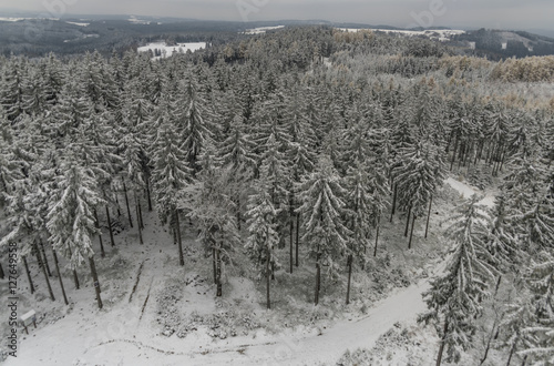 Snow forest from Krudum observation tower Poster