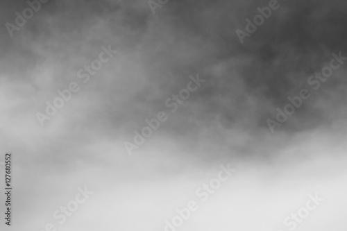 Obraz Nature fog - fototapety do salonu