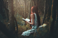 Woman Reading Alone In The Woods