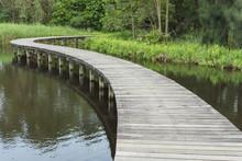 Wooden Bridge Across In The Lake