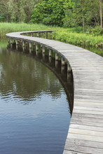 Wooden Bridge Across In The Lake