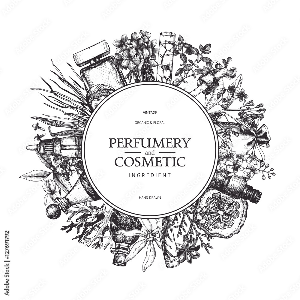Fototapety, obrazy: Vector design with hand drawn perfumery and cosmetics ingredients. Decorative background with vintage aromatic plants sketch.