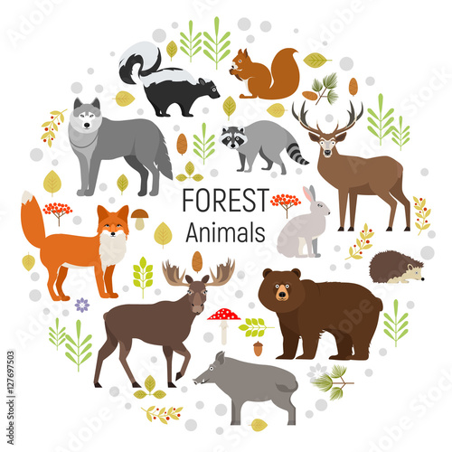 Photo  Set of forest animals in a circle isolated on white background