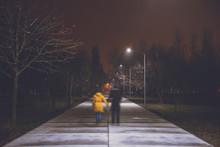 Night Park With Lights