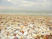 Strand Von Sanibel Island Und Captiva Island In Florida