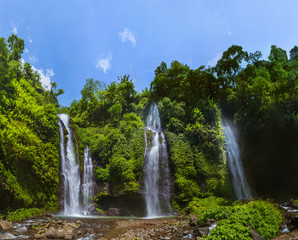 Fototapeta Sekumpul Waterfall - Bali island Indonesia