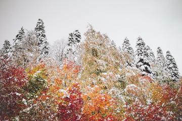 Panel Szklany Zima Autumn mountain landscape.