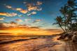 Sunrise on a tropical island. Landscape of paradise tropical beach.
