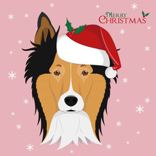 Christmas Greeting Card. Collie Rough Dog With Red Santa's Hat