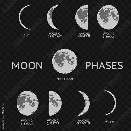 Phases of moon. Whole Astronomy Cycle. Vector Canvas Print