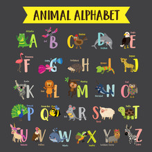 Cute Colorful Children Zoo Alphabet. Funny Cartoon Animal. Kids Abc Education. Learning English Vocabulary. Vector Illustration.
