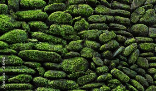 Fotografie, Obraz  the close up stone