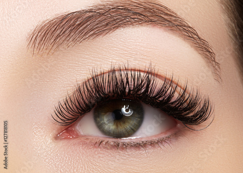 Beautiful macro shot of female eye with extreme long eyelashes and black liner makeup Fototapeta