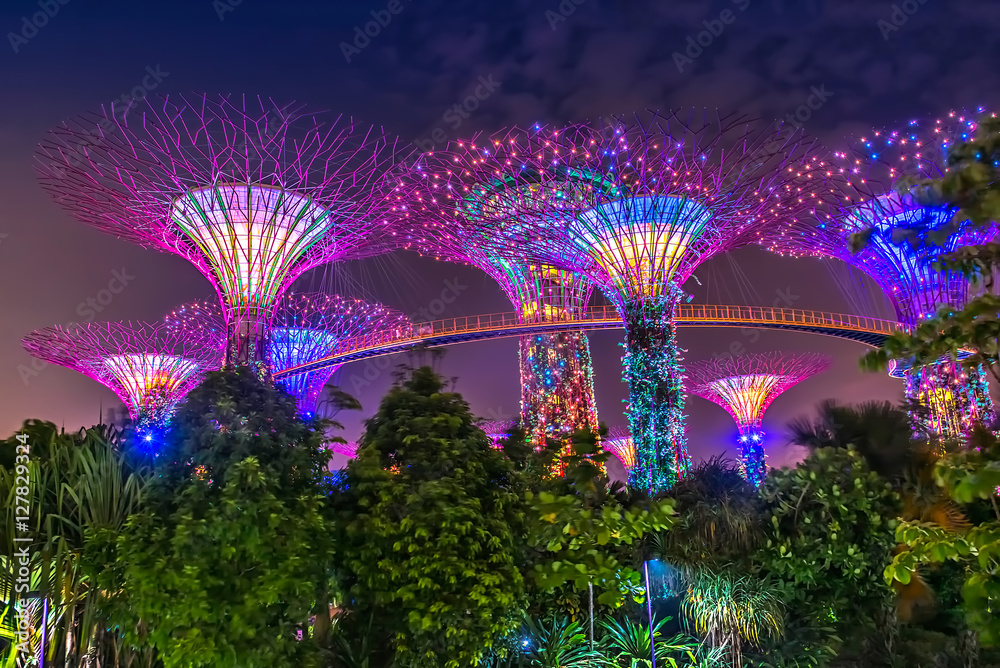 Photo & Art Print Supertree Grove, Gardens by the Bay, Singapur bei ...