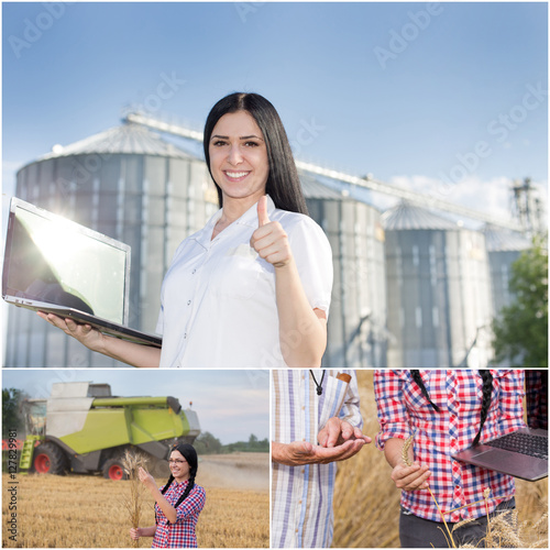Barley harvesting and storing collage Wall mural
