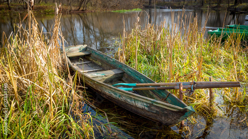 wooden boat in reeds on river