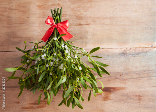 Fototapeta Broom from green mistletoe