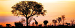 canvas print picture - African Safari Silhouette Banner