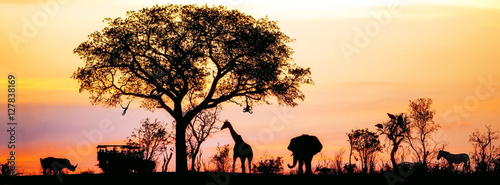 Recess Fitting Africa African Safari Silhouette Banner