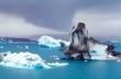 Eisberge auf dem Jökulsárlòn, im Hintergrund der Vatnajökull-Gletscher, Regenwetter/ Regenwolke,  Austurland, Island