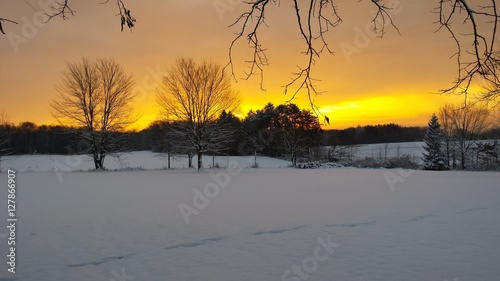 Poster Melon Yellow sunrise over Snow covered country on winter morning