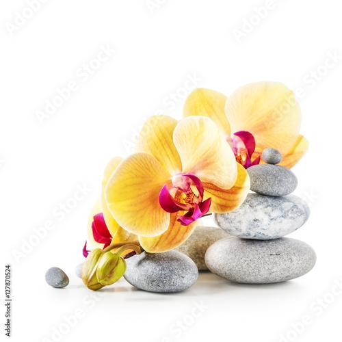 zolte-kwiaty-orchidei-i-kamienie-spa